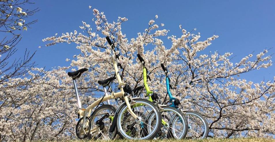 Brompton in spring